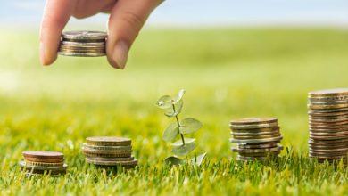 نصائح حول اختيار حساب الادخار المناسب وكيفية التخطيط لتحقيق هدفك من التوفير